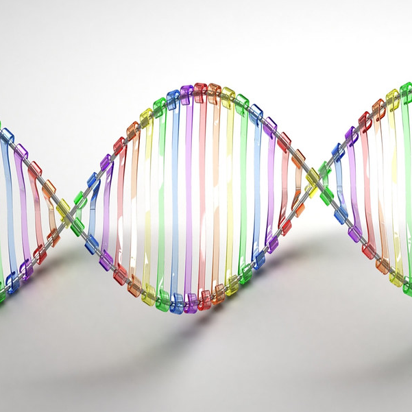 Cota and FDA Team Up to Research Precision Medicine for Cancer Treatment