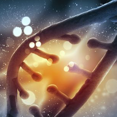 Scientists and Ethicists Call for Moratorium on Genome Editing
