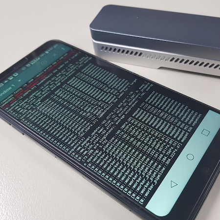 Analyzing Genomes with a Smartphone