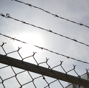 How HarrisLogic Helped Net $30 Million Through Mental Health Jail Diversion with SAP Data Solutions