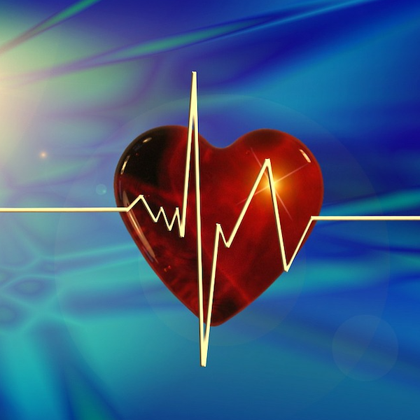 AI Model IDs Congestive Heart Failure from Single Heartbeat