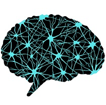 A New Machine Learning Algorithm for Alzheimer's Diagnosis