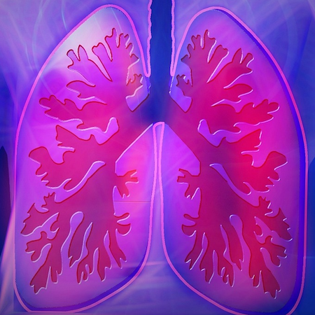 Deep Learning Model Outperforms Clinical Model in Lung Cancer Survival Prediction