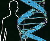 Dad Can Pass on Ovarian Cancer Genes, Too