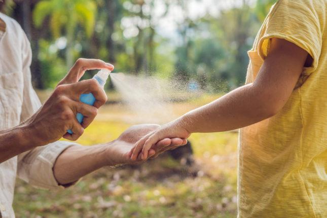 Natural vs. Chemical Bug Spray