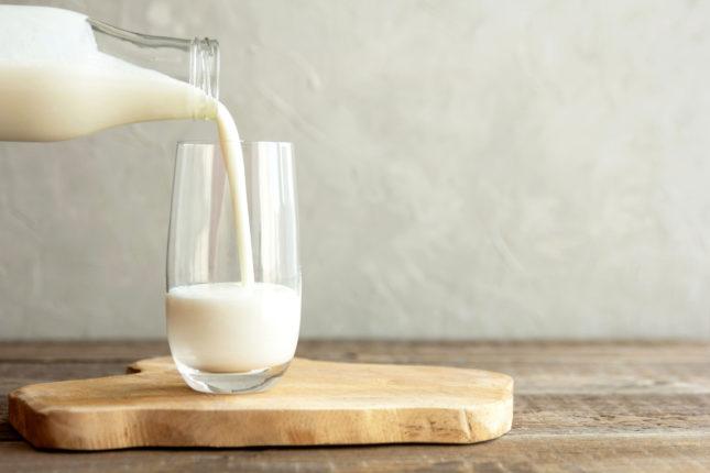 Which Milk Is Best?