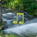 AppRx | River Sounds | HealthTap