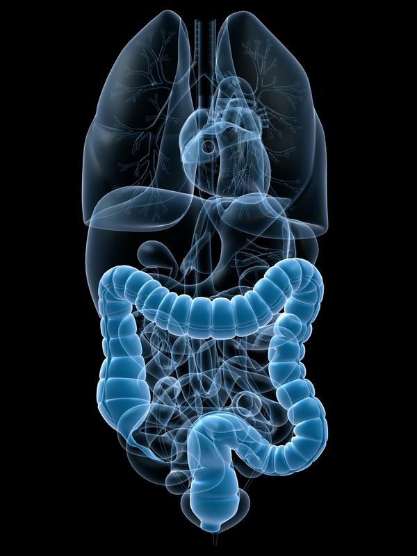 Perforated Bowel Symptoms After Colonoscopy