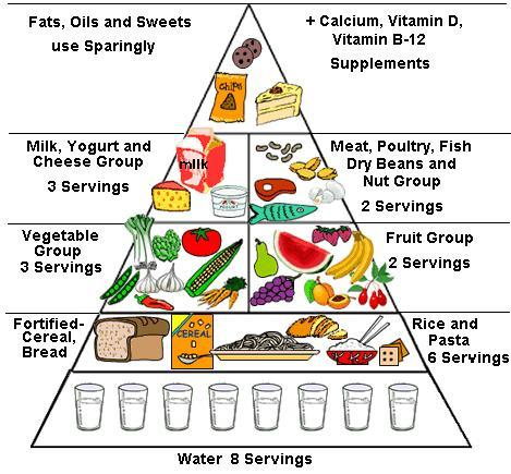 balanced diet chart of12 years child: Balanced diet chart of 12 year child kids paleo and nutrient