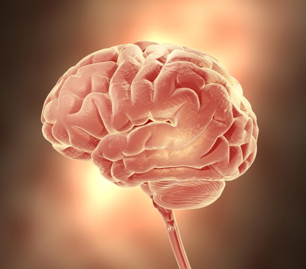 encephalopathy - doctor answers on healthtap, Skeleton