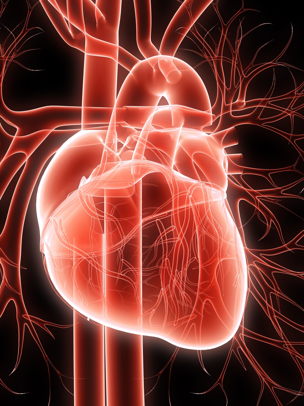 Heart Is An International Peer Reviewed Journal
