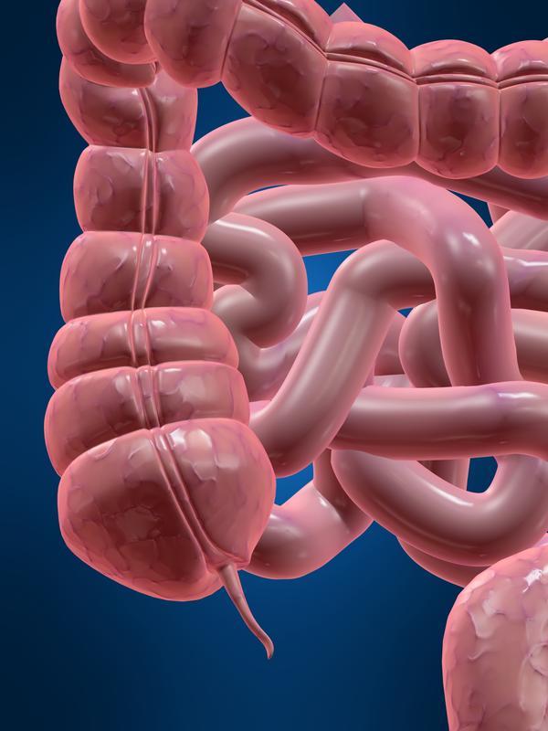 Painful anus during bowel movements