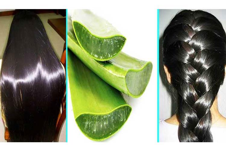 Use Aloe Vera to Stimulate Hair Growth