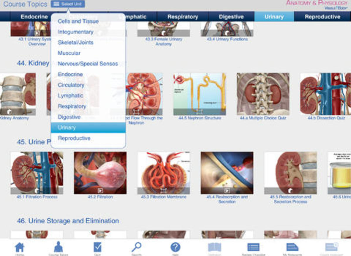 Anatomy & Physiology - Application - Health, Physical