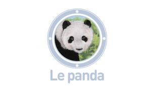 Vidéo - Le panda