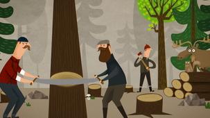Vidéo - Forêt Larose