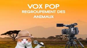 Vidéo - Vox Pop II - 2