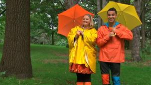 Vidéo - J'adore l'automne : Cache-cache sous la pluie