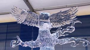 Vidéo - Les sculptures sur glace