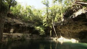 Vidéo - Marvels - Cenotes