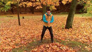 Vidéo - C'est l'automne : Montagne de feuilles
