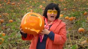 Vidéo - Mini Weather: Pumpkins