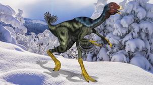 Vidéo - Top 5 Les dinosaures à plumes