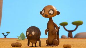 Vidéo - La collection de cacahuètes