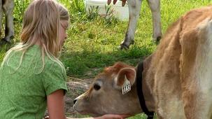 Vidéo - Suneetha - the Farm