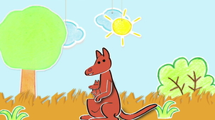 Vidéo - Why Do Kangaroos Have a Pocket?