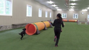 Vidéo - Jackie Ling - Dog Tricks