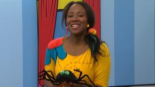 Vidéo - Comptine qui rime : Une petite araignée