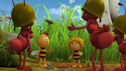 Image univers Maya l'abeille