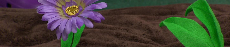 Image univers Fleurette