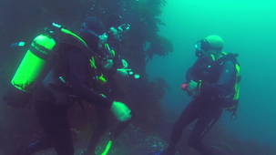 Vidéo - Scuba Diving - Trip for Two (With Alex and MJ)