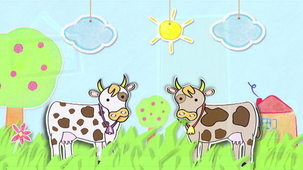 Vidéo - Why do cows have different colours?