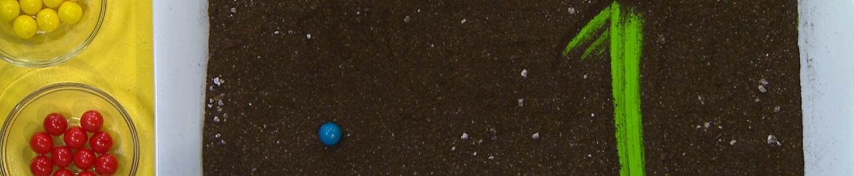 Universe image Fleurette