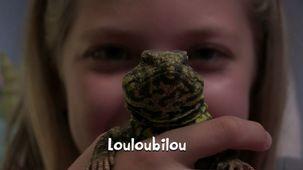 Vidéo - Éliane - les lézards