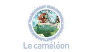 Vidéo - Le caméléon
