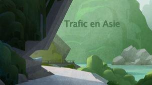 Vidéo - Trafic en Asie