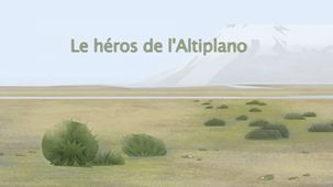Vidéo - Le héros de l'Altiplano