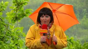 Vidéo - Mini-Weather: Rain