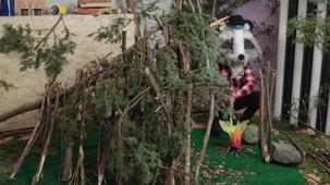 Vidéo - Top 4 sur les abris de survie en forêt