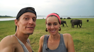 Vidéo - Elephant Safari (With Alex and MJ)