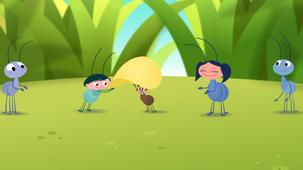Vidéo - Aussi fort qu'une fourmi !