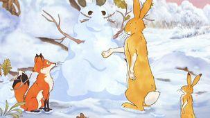 Vidéo - Le lièvre de neige