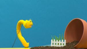 Vidéo - Fleurette jardine : Planter les graines