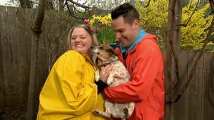 Vidéo - C'est le printemps : Le chien