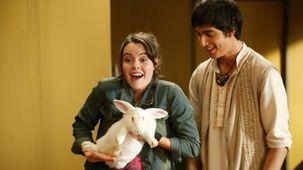 Vidéo - Rabbit Season
