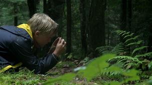 Vidéo - Ludovic : Les champignons
